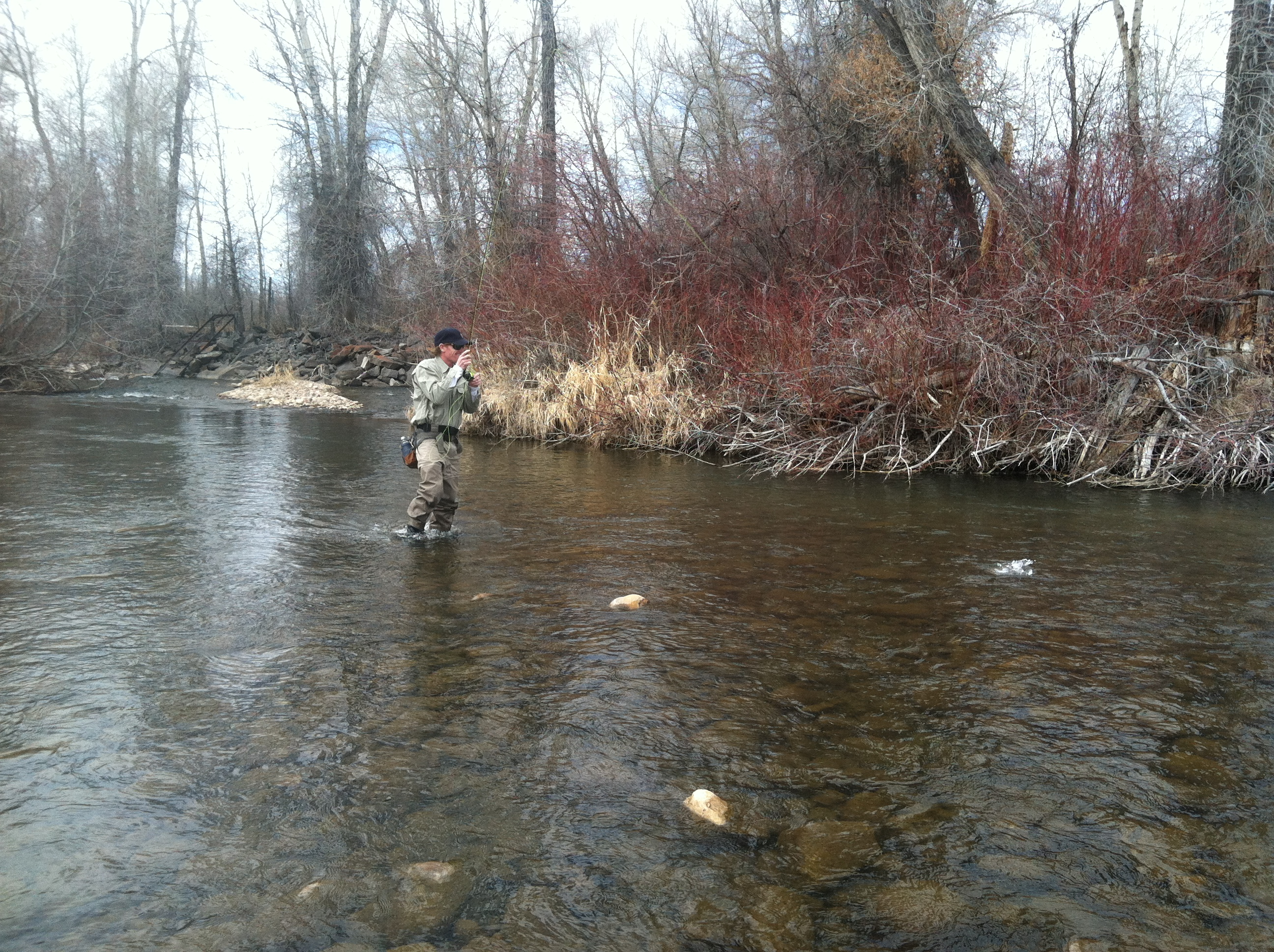 East Canyon Creek & Upper Provo Fishing Report