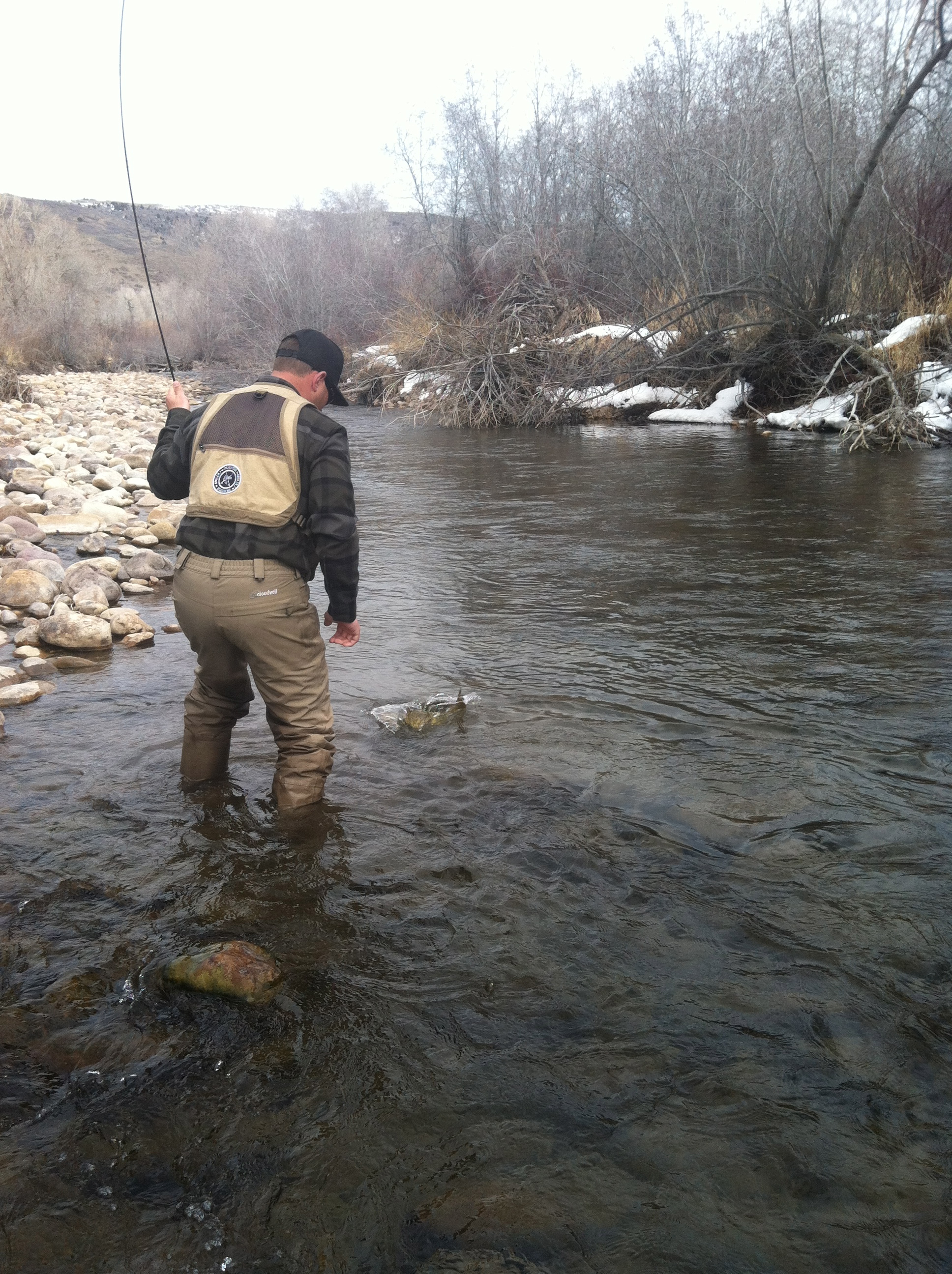 east canyon creek upper provo fishing report brighton