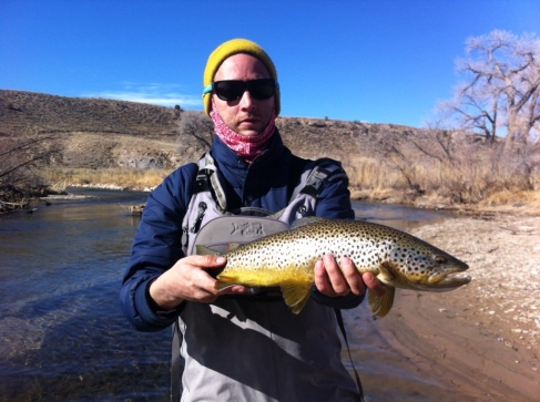 Eastern Utah Browns