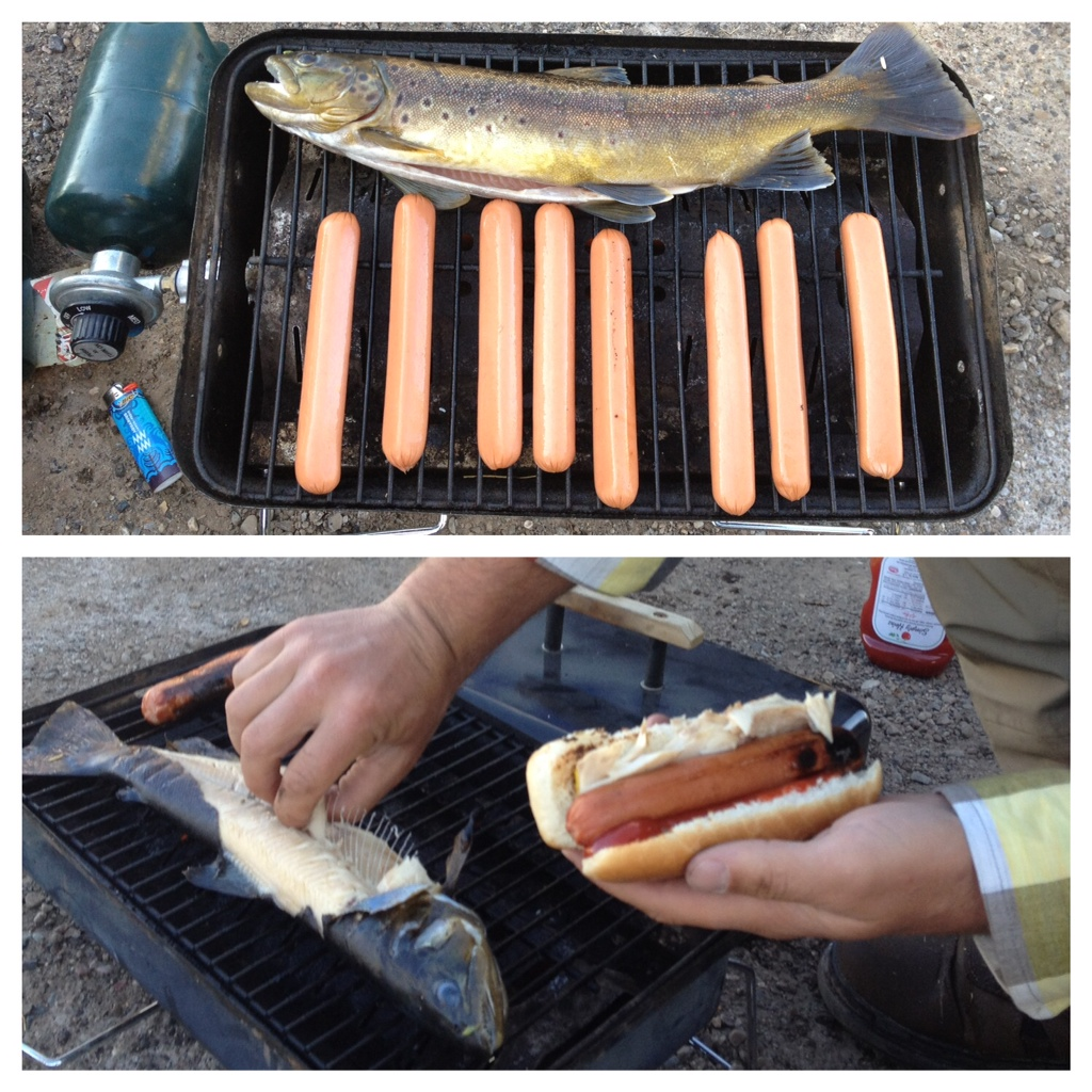 Trout Dogs