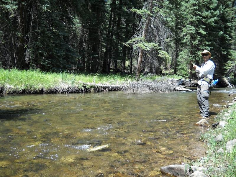 Colorado Fishing!